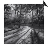 Central Park Path in Fall 2 Prints by Henri Silberman
