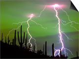 Lightning Strikes with Saguaro Cacti, Sonoran Desert. Tucson, Arizona Poster by Thomas Wiewandt