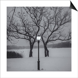 Prospect Park Lamp Post in Snow Prints by Henri Silberman