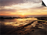 California, San Diego, Sunset Cliffs, Sunset Reflecting in Tide Pools Poster by Christopher Talbot Frank