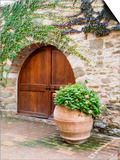 Italy, Tuscany, Chianti Region. This Is the Castello D'Albola Estate Plakat af Julie Eggers