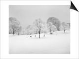 Prospect Park, Brooklyn In Snow2 - Winter Scene With Dog Prints by Henri Silberman