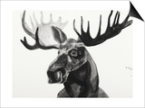 Watercolor Moose Prints by Ben Gordon