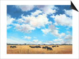 Big Sky Country Prints by David Marty