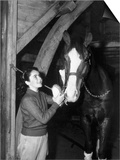 National Velvet, Elizabeth Taylor, 1944 Prints