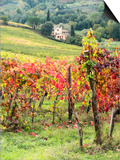 Italy, Tuscany. Farm House and Vineyard in the Chianti Region Poster af Julie Eggers