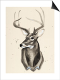 Watercolor Deer Head 3 Poster by Ben Gordon