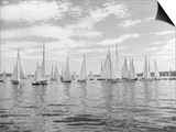 Boats Lined up for a Race on Lake Washington Poster by Ray Krantz