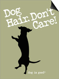 Dog Hair Dont Care Poster by  Dog is Good