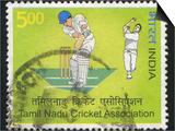 Cricketspillere Plakater av  rook76