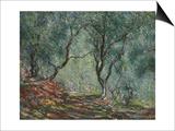 Bois D'Oliviers Au Jardin Moreno, 1884 Prints by Claude Monet