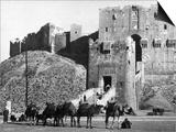 Citadel of Aleppo Prints