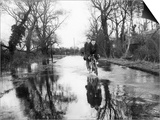 Flooded Country Lane Print by Fred Musto