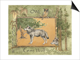 Gray Wolf Poster by Anita Phillips
