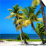 Palms on a White Sand Beach in Key West - Florida Prints by Philippe Hugonnard
