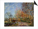 At the Edge of the Forest in Fontainebleau, 1885 Posters by Alfred Sisley