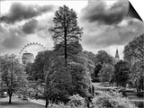 View of St James's Park Lake and Big Ben - London - UK - England - United Kingdom - Europe Prints by Philippe Hugonnard