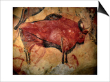 Painting in the Cave of Altamira, 35,000 to 11,000 Bc Prints