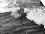 California Surfer Prints