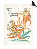 Plants, Lilium Tigrinum Print by Walter Crane