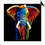 Great Elephant Prints by Clara Summer