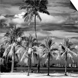 Paradisiacal Beach overlooking Downtown Miami - Florida Posters by Philippe Hugonnard