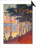 Sails and Pines Print by Paul Signac