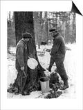 Tapping for Maple Syrup, Canada, 1936 Poster