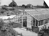 Greenhouse, Fox Ash Art