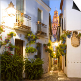 Spain, Andalusia, Cordoba. Calleja De Las Flores (Street of the Flowers) in the Old Town, at Dusk Print by Matteo Colombo