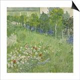 Daubigny's Garden, 1890 Posters by Vincent van Gogh