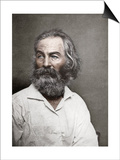 Walt Whitman, American Poet, C1880S Prints by MATHEW B BRADY