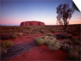 Ayers Rock, Uluru at Sunset Prints