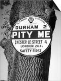 'Pity Me' Signpost Prints by J. Chettlburgh