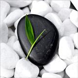Zen Stone Prints