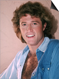 Andy Gibb Prints