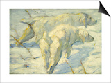 Siberian Dogs in the Snow Art by Franz Marc