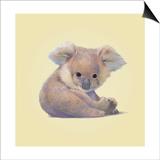 Koala Print by John Butler Art