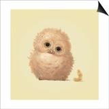 Owl Prints by John Butler Art