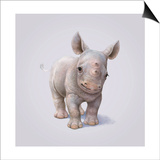 Rhino Prints by John Butler Art