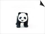Baby Panda Prints by Romina Bacci