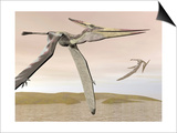 Two Pteranodons Flying over Small Islands Prints
