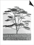 Teamwork Prints by Dennis Frates