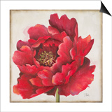 Red Peony Posters by Patricia Pinto
