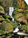 Triberg Waterfall in Autumn, Black Forest, Baden-Wurttemberg, Germany Art by Green Light Collection