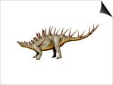 Kentrosaurus Dinosaur Posters