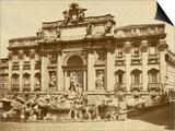 The Trevi Fountain Posters by Giacomo Brogi
