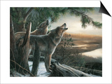 Call of the Wild Prints by Kevin Daniel