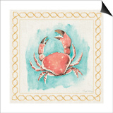 Coastal Mist Crab Border Turquoise Prints by Elyse DeNeige