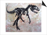 Allosaurus Dinosaur Skeleton Prints by Stocktrek Images